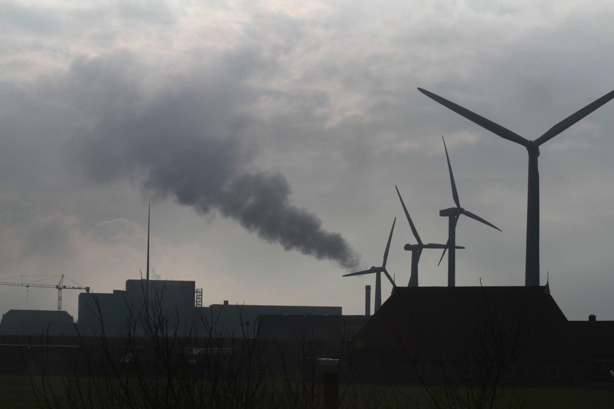 Rook over Harlingen